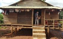Ăn cháo bắp trộn nấm, 6 người trong gia đình bị ngộ độc
