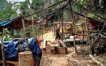 'Vàng tặc' trở lại Nam Đông sau 10 năm vắng bóng