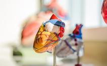 Chế tạo trái tim nhân tạo hoàn chỉnh đầu tiên trên thế giới