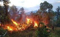 Rừng thông phòng hộ hơn 40 năm tuổi ở Thừa Thiên Huế cháy từ chiều qua tới sáng nay