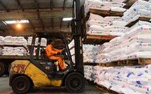 Cần tạm ngưng xuất khẩu phân bón