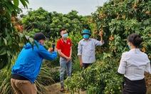 Mục tiêu bán 100 tấn vải thiều Bắc Giang trên Sendo