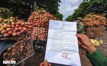 Đà Nẵng vận động chợ, siêu thị tiêu thụ vải thiều giúp nông dân Bắc Giang, Hải Dương