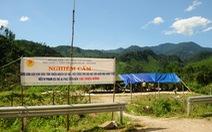 Rừng ươi náo động, người dân và kiểm lâm lập lán chốt chặn ở cửa rừng