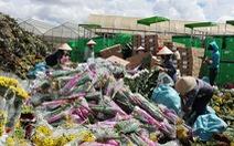 Vì sao hàng trăm tấn hoa Đà Lạt xuất khẩu phải tiêu hủy?