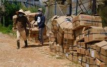 Đà Lạt, Lâm Đồng xem cung ứng rau cho vùng dịch là nhiệm vụ