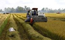 Hậu Giang: Muốn thu hoạch nông sản phải có xét nghiệm âm tính