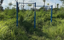 Vườn hoa mới bàn giao đã thành 'rừng rậm', công viên để hoang phế
