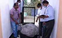 Tình cờ phát hiện đá quý 500 kg trong sân nhà