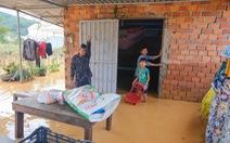 Nước lũ dâng trên sông Cam Ly, vườn nhà dân Lâm Đồng bị ngập