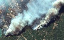 Ảnh cháy rừng ngùn ngụt tàn phá miền nam Thổ Nhĩ Kỳ