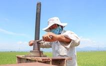 Một mình lo nước tưới cho 240ha lúa của cả làng Chăm đang bị phong tỏa