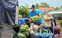 'Bà con mình ăn rau rừng, để dành chuối, bí, măng… gửi về Đà Nẵng chống dịch'