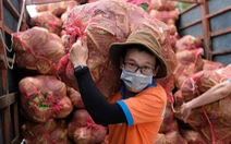 Đoàn xe nối đuôi đi xuyên đêm chở nông sản Đà Lạt tiếp tế cho bà con Đà Nẵng