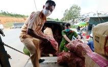 Nông dân và Công an Đà Lạt thu hoạch, sơ chế rau gửi tặng bà con TP.HCM