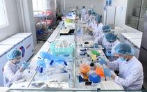 Vắc xin nội: Nếu được cấp phép lưu hành khẩn cấp...