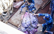 Sài Gòn Co.op đề nghị hải quân hỗ trợ vận chuyển hàng hóa