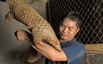 Người Việt làm chủ dự án bảo tồn