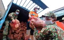 Lâm Đồng hào phóng, tặng rau nguyên vườn, chở rau bằng xe giường nằm máy lạnh đến TP.HCM