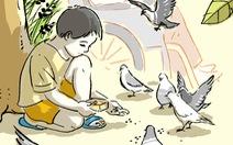 Truyện ngắn: Bầy chim câu trong hẻm nhỏ