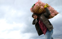Mất mùa do mưa, Đà Lạt vẫn chuyển rau tặng TP.HCM, chở gấp đến bệnh viện