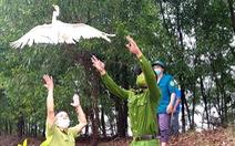 Ngăn chặn nạn săn bắt, trả lại bình yên cho đàn chim trời mùa di cư