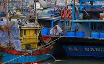 Ngư dân Đà Nẵng mang tàu thuyền lên đường, néo vô cây... đề phòng bão số 6