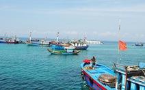 Cần thành lập lực lượng giám sát tài nguyên biển Việt Nam