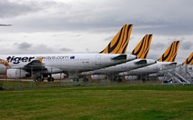 Úc cấm Tiger Airways bay