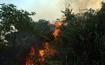 Cháy hàng chục hecta rừng đặc dụng Hải Vân