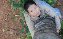 Người mẹ trèo dừa - hình ảnh người phụ nữ Việt Nam