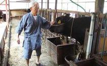 Mối lo thịt bò Nhật nhiễm xạ