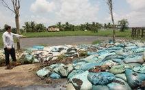 TP.HCM: Lại phát hiện cơ sở vi phạm về bảo vệ môi trường