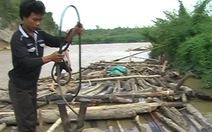 Tàn phá rừng miền tây Nghệ An