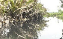 Ô nhiễm ở Khu công nghiệp Lê Minh Xuân