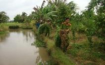 Vĩnh Long: phát hiện và tịch thu 114 cây cần sa