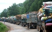 Hàng trăm xe tải chờ bán sắn