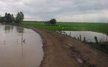 Nghĩ về phát triển đê bao đồng bằng sông Cửu Long