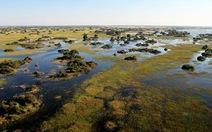 Botswana: máy bay rơi, 8 người chết