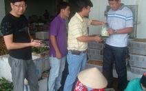 Xuất nông sản tiểu ngạch qua TQ: Ràng buộc người mua