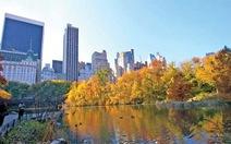 Mùa đẹp nhất ở New York
