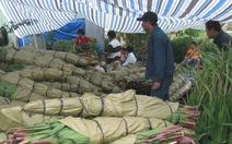 Hoa layơn trúng mùa, được giá