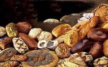 Bánh mì vòng quanh thế giới