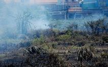 Suýt chết ngạt vì khói đốt cỏ