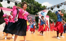 Sắc hoa anh đào Nhật giữa nắng hè Sài Gòn