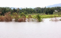Thủy điện tích nước làm ngập đất sản xuất của dân