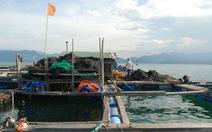 Bè cá của người Trung Quốc: Phạt 4 triệu đồng!