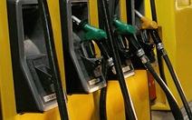 Giá dầu thô chạm đáy tám tháng