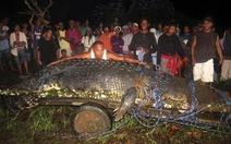 Philippines: cá sấu khổng lồ vào sách kỷ lục Guinness