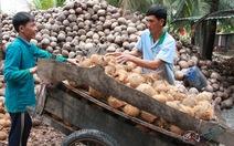 Cần tháo gỡ khó khăn cho người trồng lúa, nuôi cá